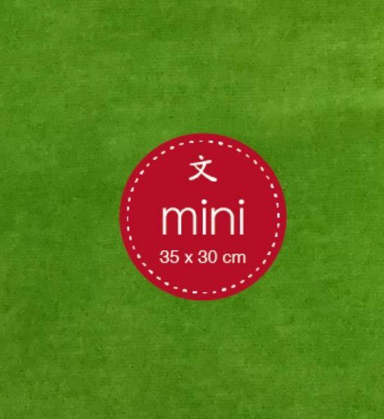 Hygienebezug ZS mini grün